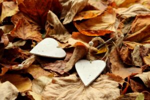 Two wooden hearts lay in a pile of fall leaves